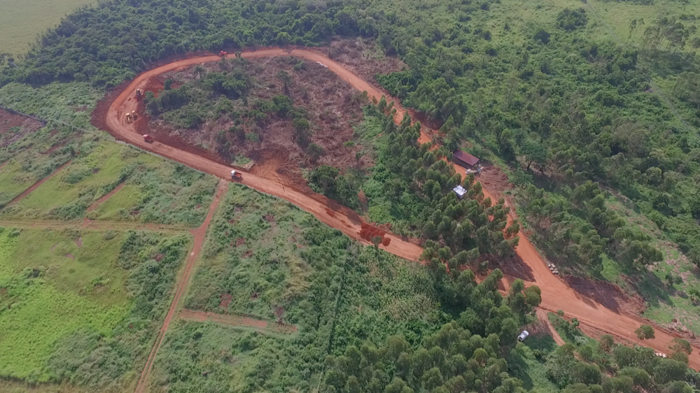 Aerial view of land with road
