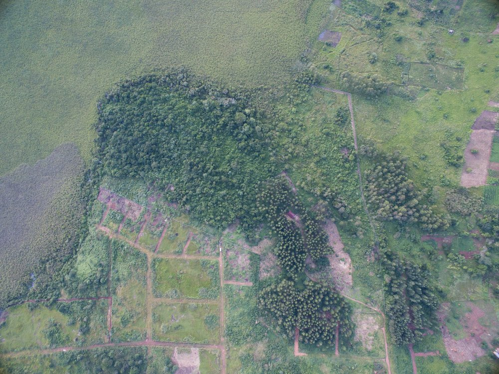 Aerial view of land before clearing