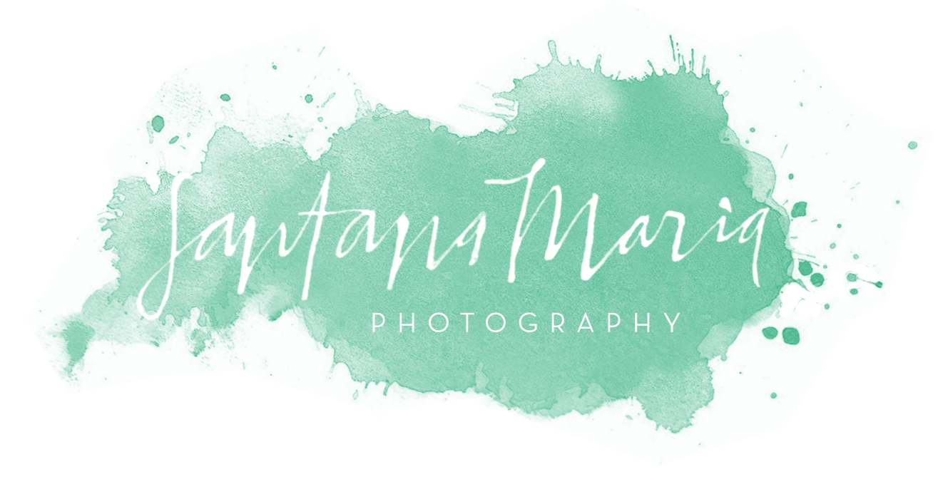 Auckland Wedding and Portrait Photographer