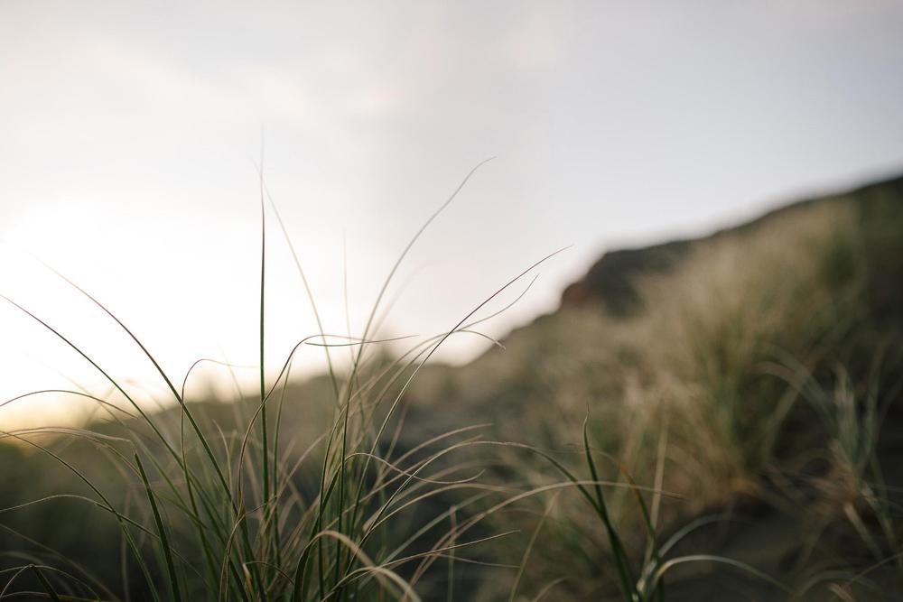 801-auckland-bethells-beach-engagement.jpg