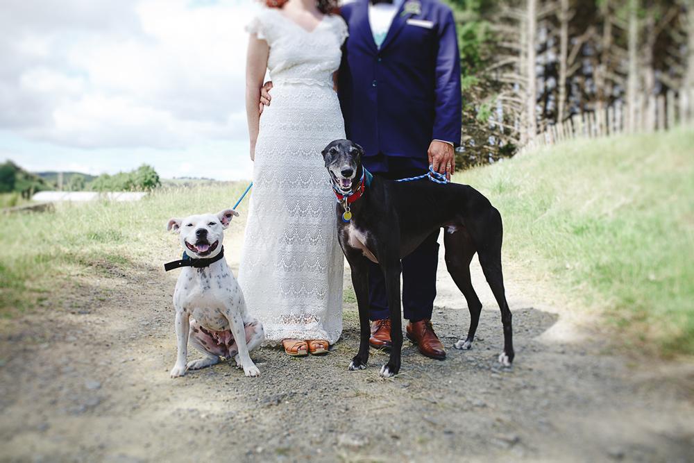 094-waimauku-wedding-photographer--woodland-wedding--farm-wedding.jpg