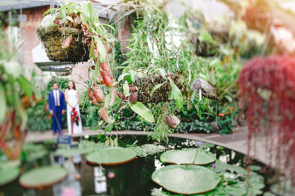 242-auckland-wedding-photographer.jpg