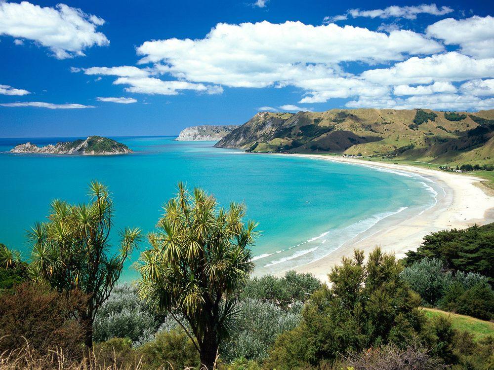 NZ3.jpg