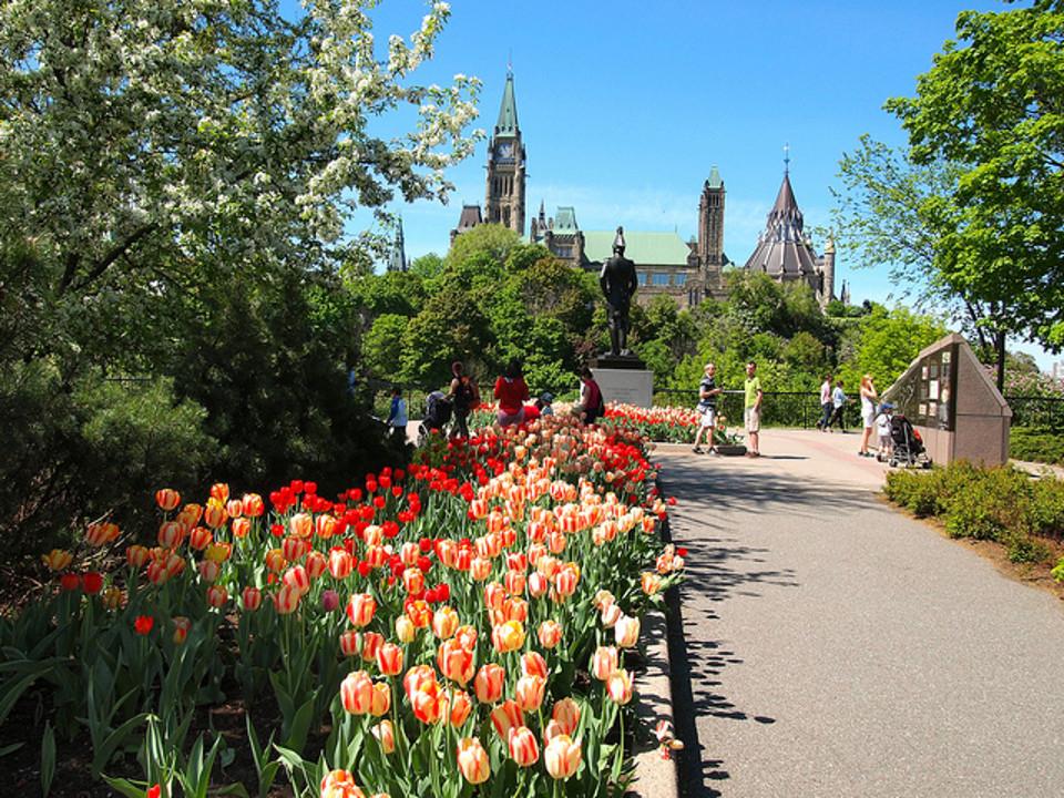 Ottawa8.jpg