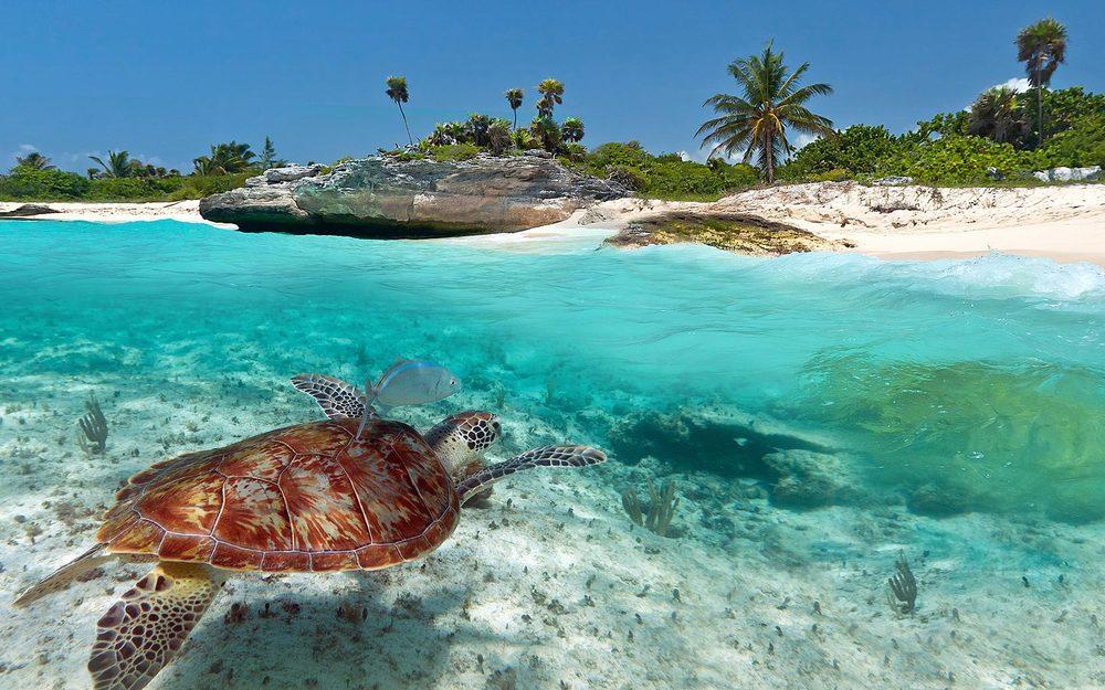 Espanhol e muita diversão na Riviera Maya, no México!