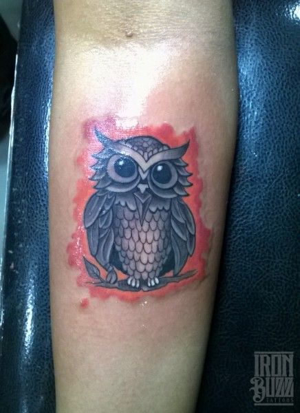 cartoon+cute+owl+bird+colour+tattoo+design+by+best+tattoo+artist+in+mumbai+subhojit+chakroborty+eric+jason+dsouza+from+best+tattoo+parlour+studio+in+india+iron+buzz+tattoos+mumbai.jpg