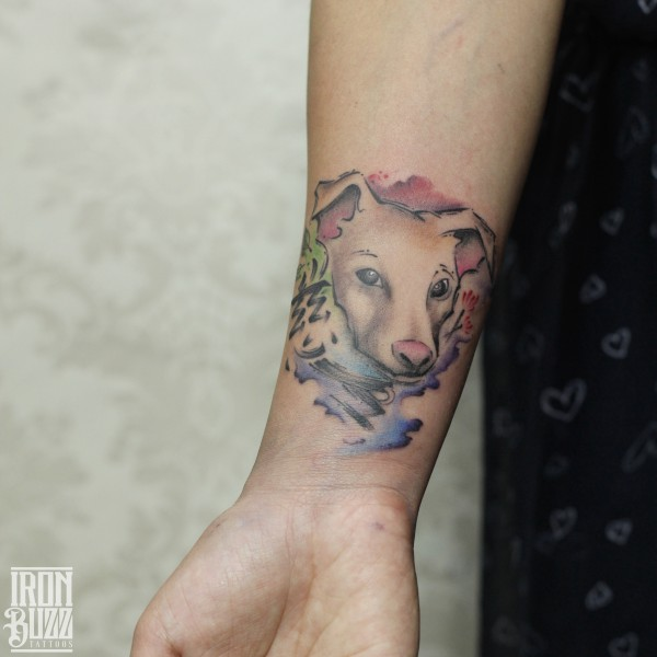 watercolour+dog+tattoo+design+on+arm+by+best+tattoo+artist+in+mumbai+utsav+poddar+eric+jason+dsouza+from+best+tattoo+parlour+studio+in+india+iron+buzz+tattoos+mumbai.jpg