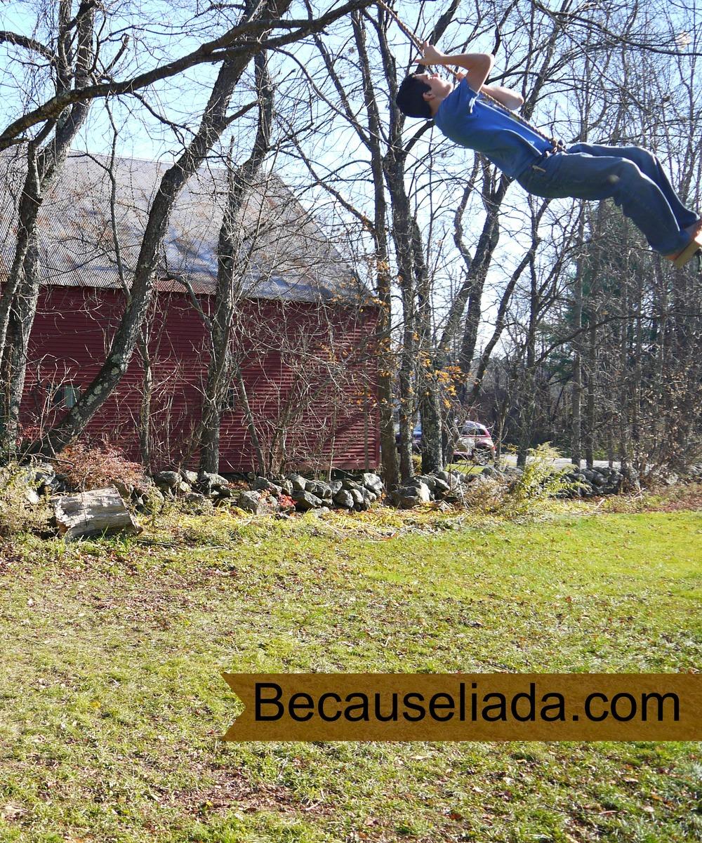 swing 4.jpg