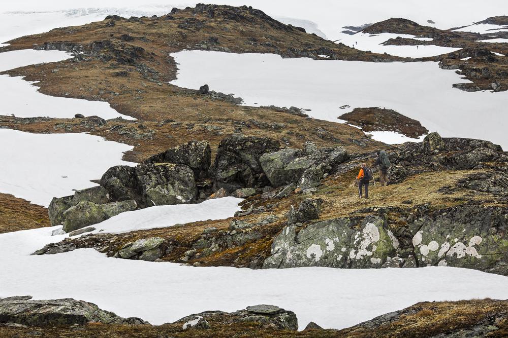 Vegafoto-Norge-Vandring-201606 (10 av 27).jpg