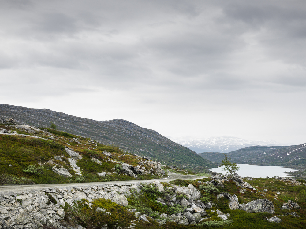 Vegafoto-Norge-Vandring-201606 (24 av 27).jpg