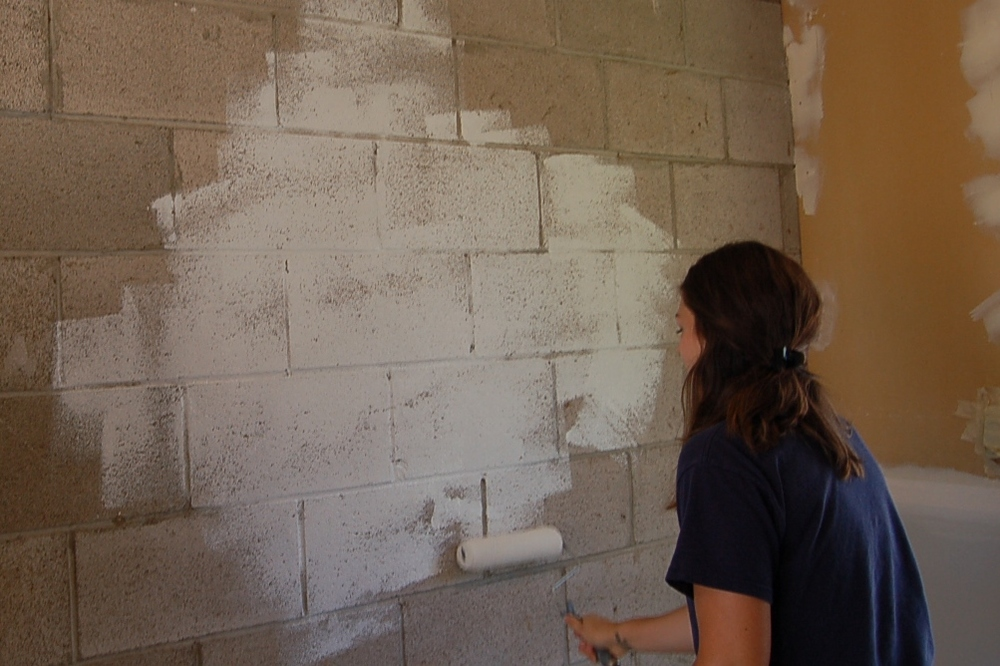 Analisa McCann-Holcolmb tackled various painting projects to Touch Up the Room