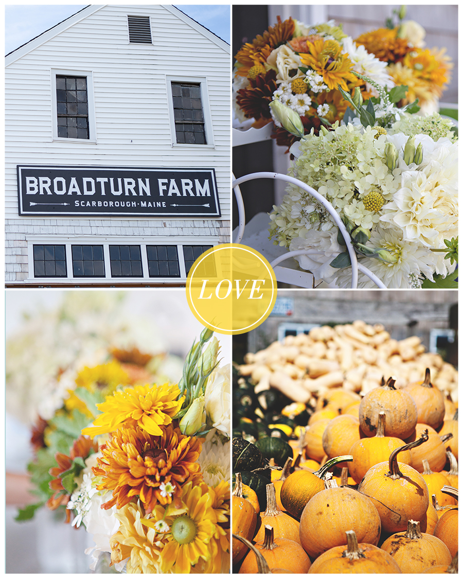 Maine Wedding Photography pumpkins and bouqets.jpg