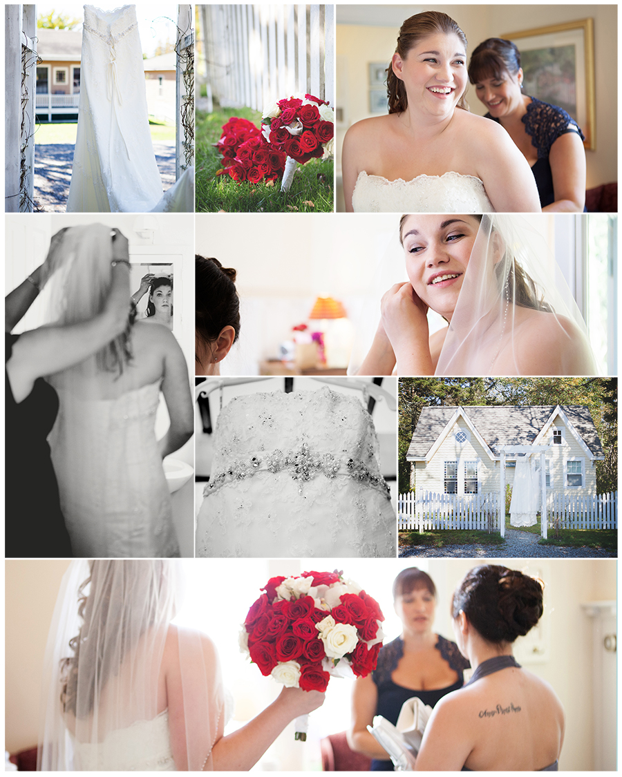Maine wedding photographer the dress red roses.jpg