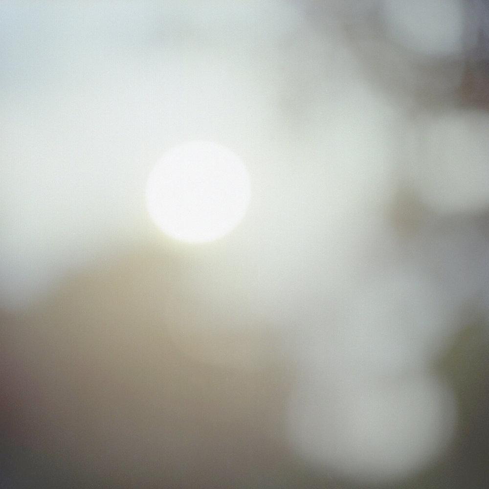 Harrsen-Kanoa-04.jpg