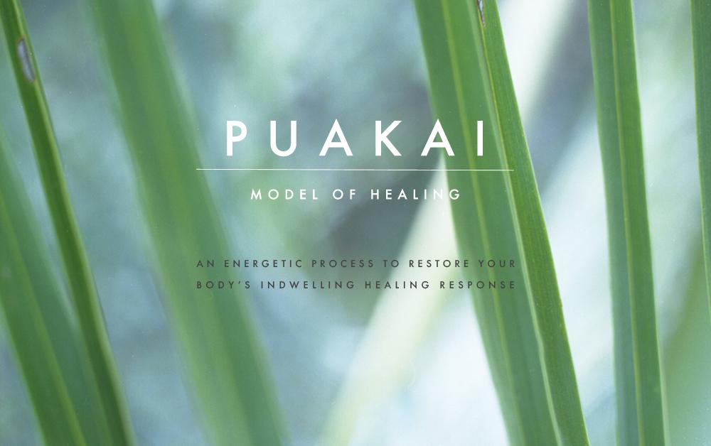 puakai-healing-model.jpg