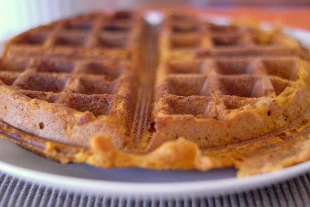 closeup-of-pumpkin-waffle-with-very-shallow-depth-of-field.jpg