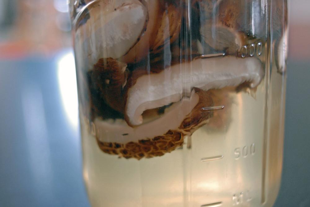 closeup-of-shitake-mushrooms-steeping-in-a-jar.png