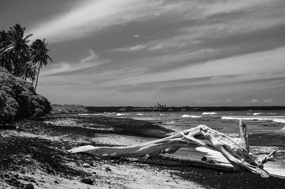 Hawaii 2012_Big Island.jpg