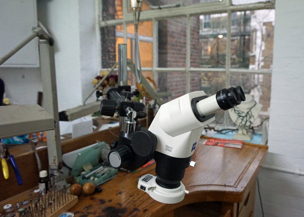 ornella ianuzzi microscope