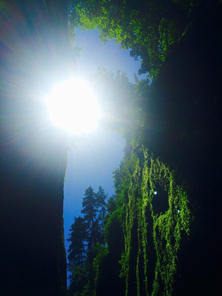 Looking upwards from the bottom of oneonta gorge