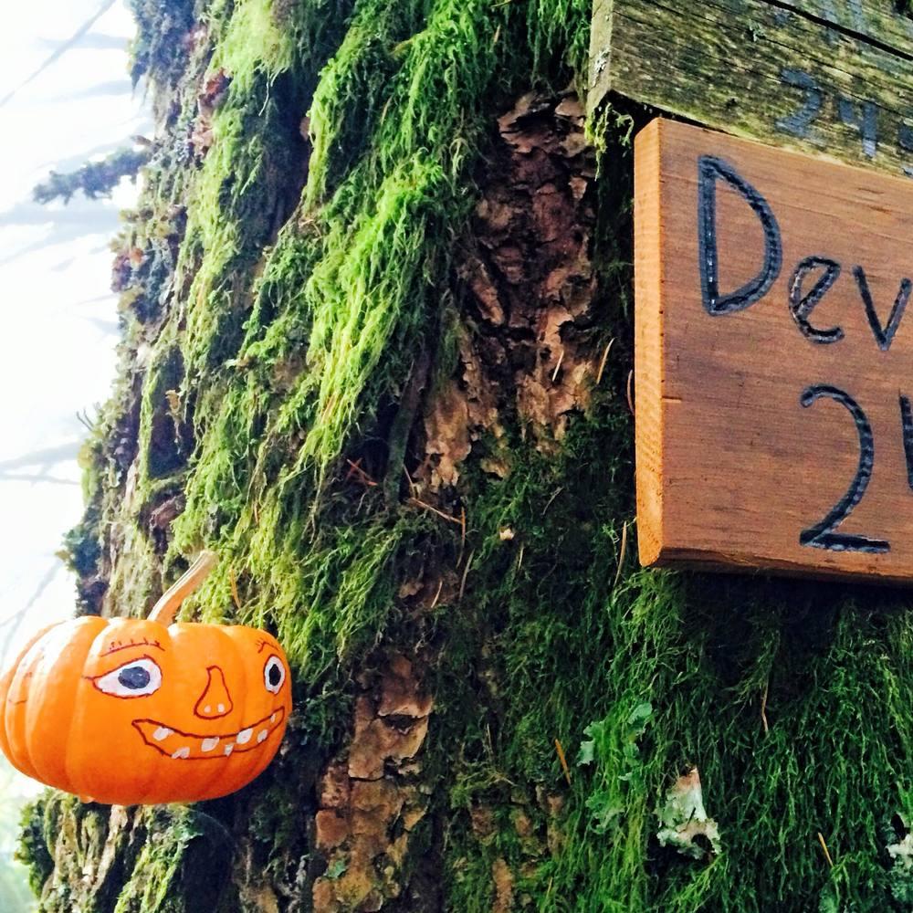 Halfway. Happy Halloween