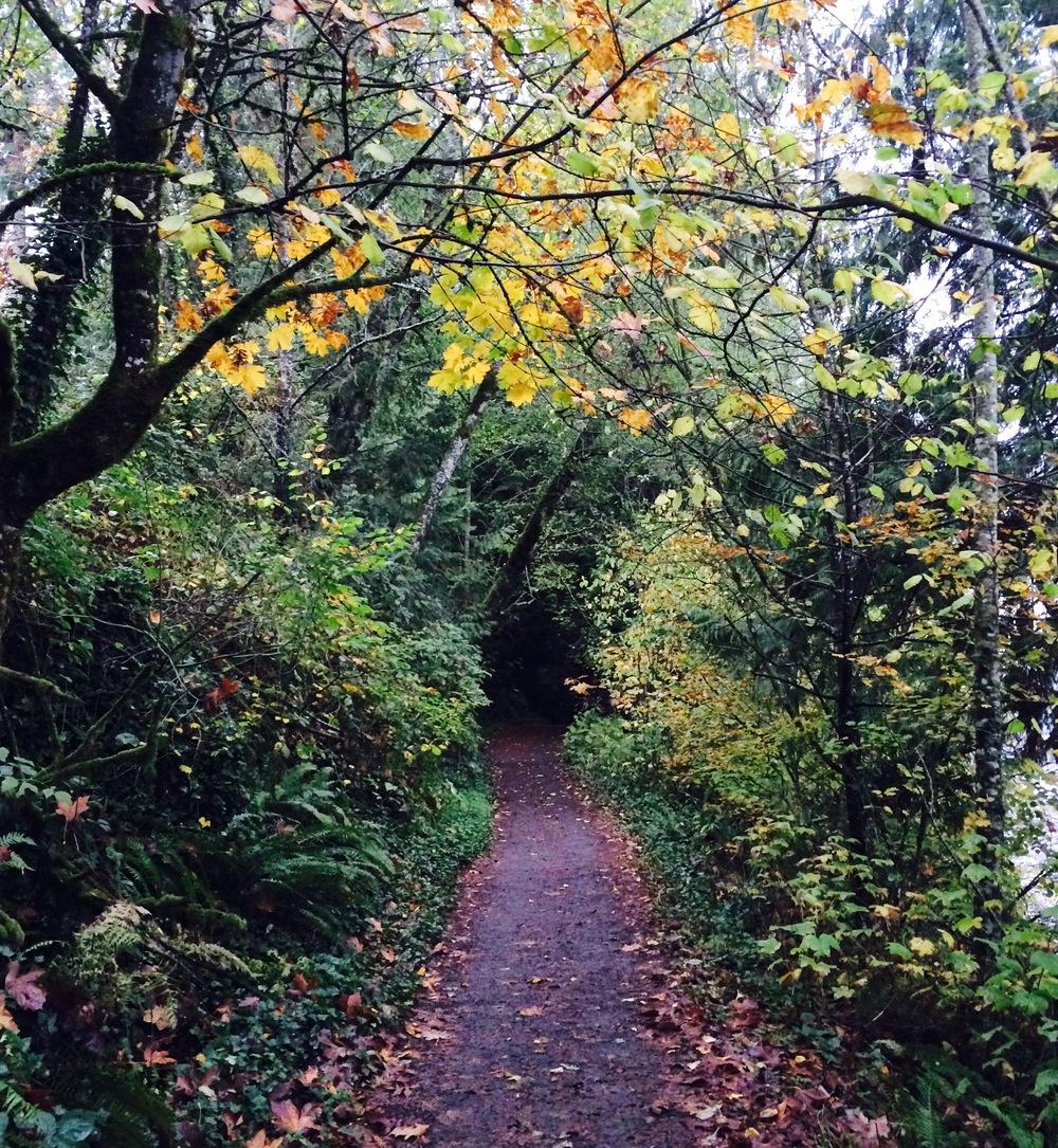 Heritage trail at lacamas lake