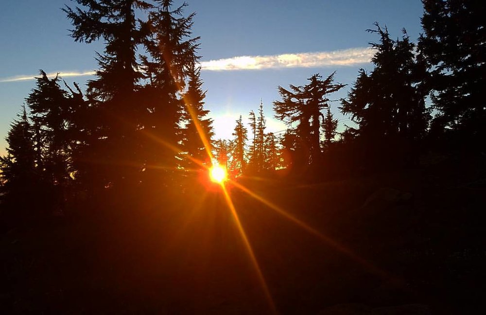 Last evening on the trail. PCt near Timberline Lodge and White River