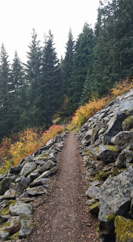 Pacific Crest Trail near zigzag canyon