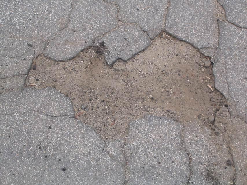 asphalt cracks - camel.jpg
