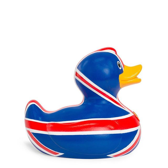 """British and proud!"" — Brit Duck Keeping calm and carrying on with a stiff upper– uh, beak? 😍🇬🇧😅 . . . . . #bud #brit #duck #britishandproud #unionjack #britishhumour"