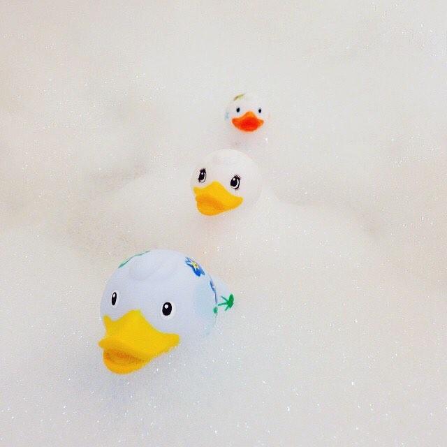 Ducks in a row! 🛁😍🛁 #budduck Original photo: @clementine_m3 . . . . . #bud #forgetmenot #fluffy #pretty #duck #ducksinarow #bathtimefun #rubadubdub