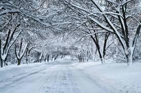 Snow in dreams.jpg