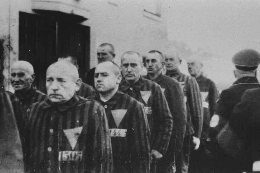homosexual holocaust.jpg