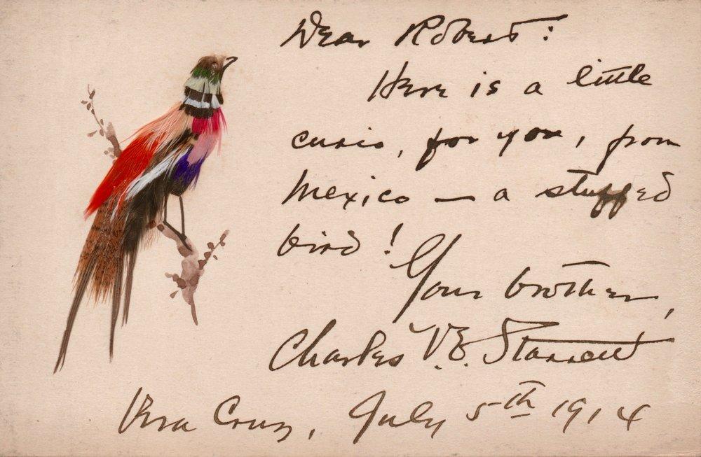 Robert's bird card.jpg