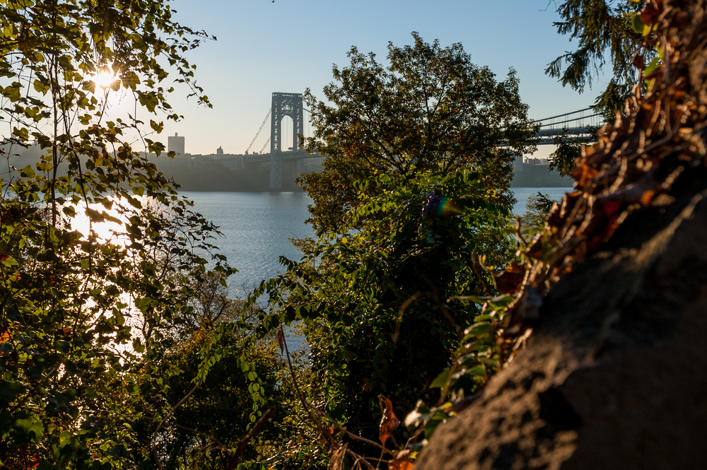 george_washington_bridge_through_trees_2013.jpg