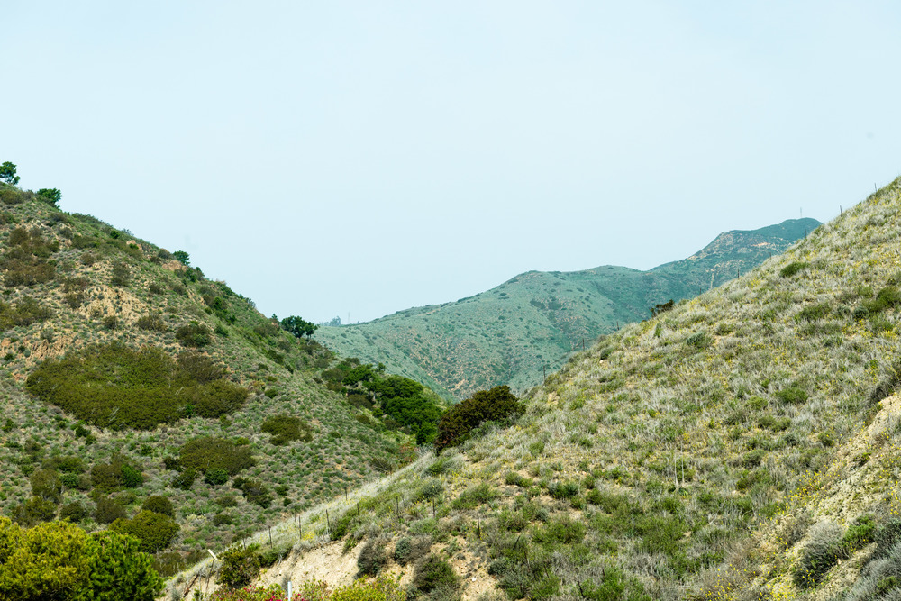 A view into the entrance of Solstice Canyon