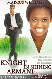 Knight in Shining Armani    by Marcus Williams   On her first day as the latest maid in the Greyson manor, Alesha is well aware that she was mostly hired for political reasons: rumors are swirling that Mrs. Greyson is racist and the by hiring a black maid the power couple hopes to keep up appearances.  Alesha soon learns a surprising revelation about Mr. and Mrs. Greyson's relationship; and the result will have her stepping into a world of decadence, high society, classism... and passion.   Available now!   Amazon ,  Barnes & Noble ,  iTunes ,  Google-Play ,  All-Romance ,  Kobo   Coming Soon:  Scribd