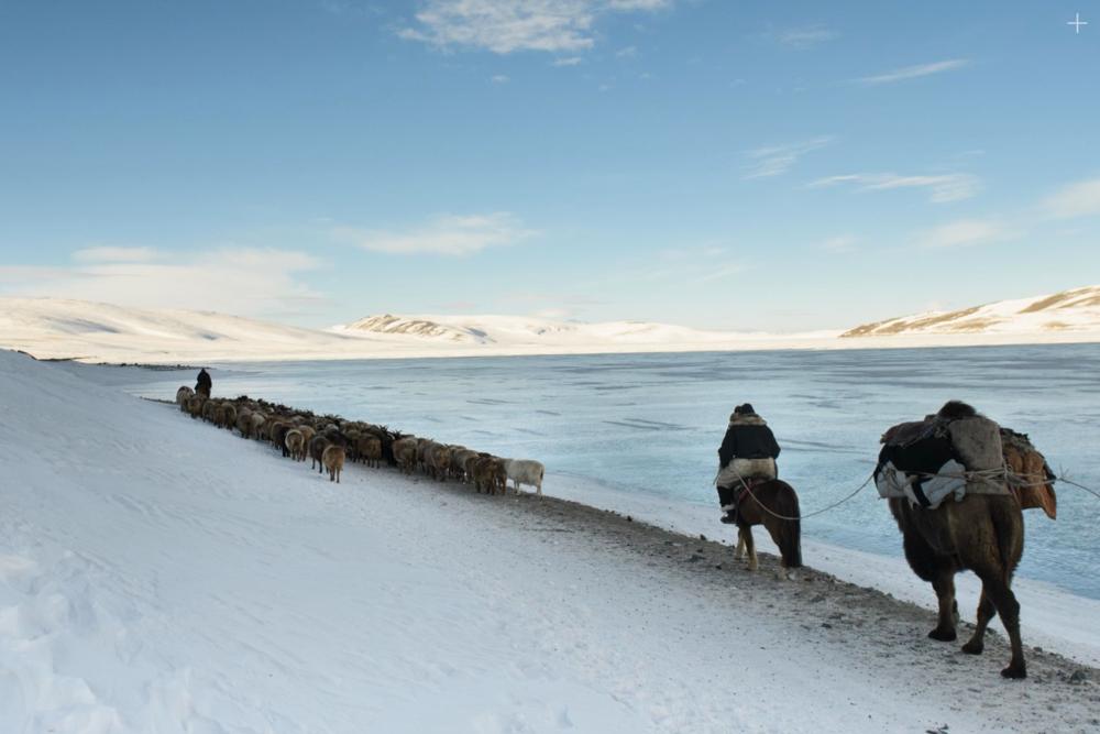 Spring Migration of the Kazakh nomads - Karolina Törnqvist Photography expedition Sweden 2018
