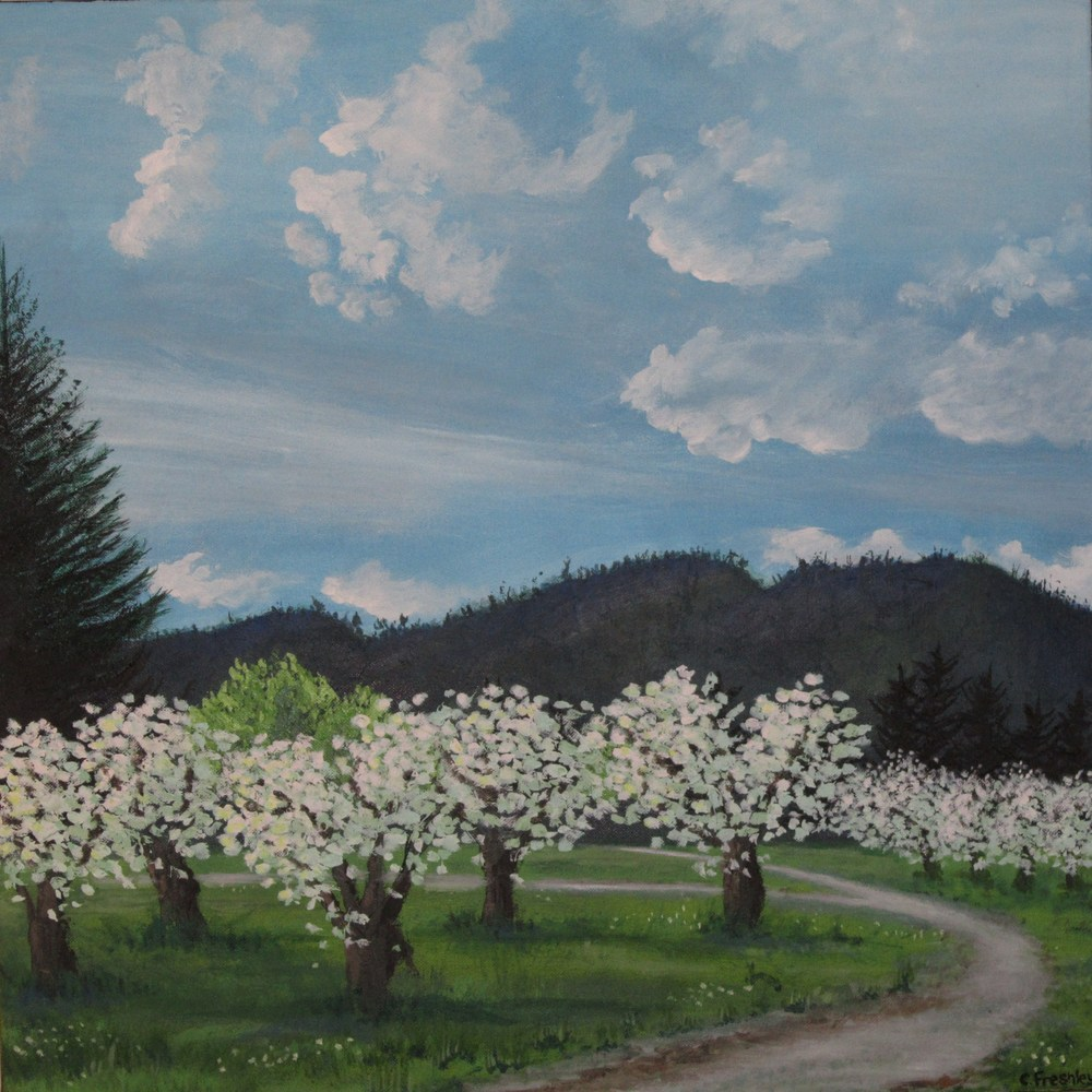 "Apple Trees in Wenatchee - 24""x24"" - SOLD"
