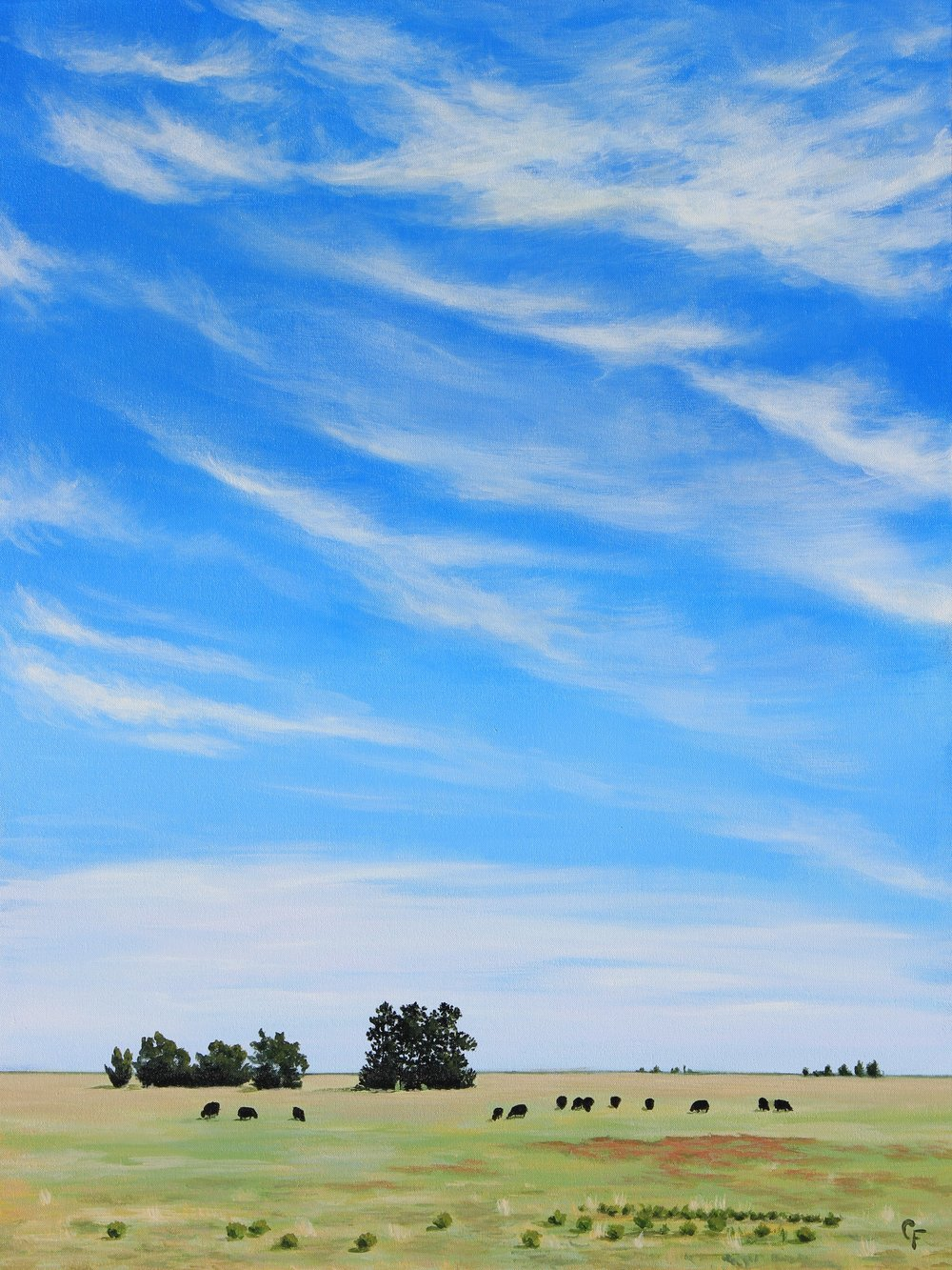 CatherineFreshley_Hwy412Cows.JPG