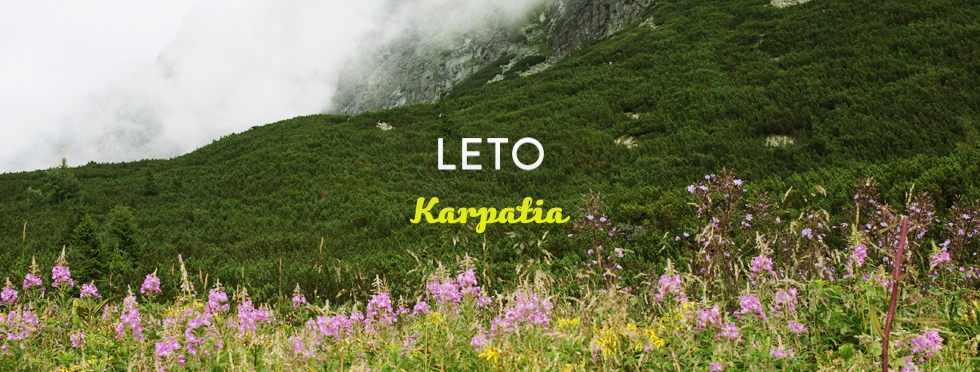 first-moment-leto-karpatia.jpg
