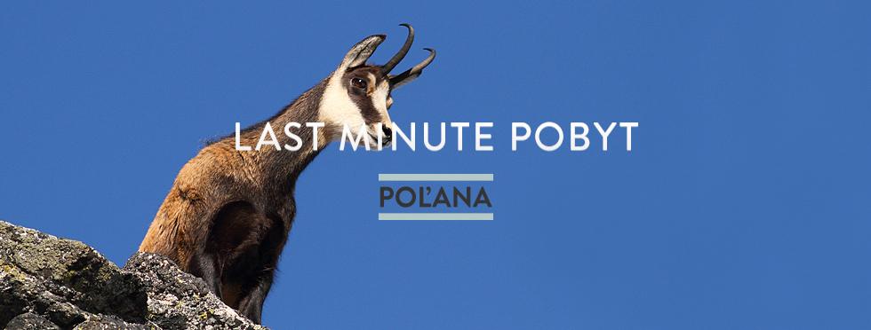 last-minute-polana.jpg