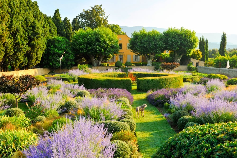 It is here at Le Pavillon de Galon in Provence that we have the chance to create with the Garden-Secret Studio, while experimenting new gardens.