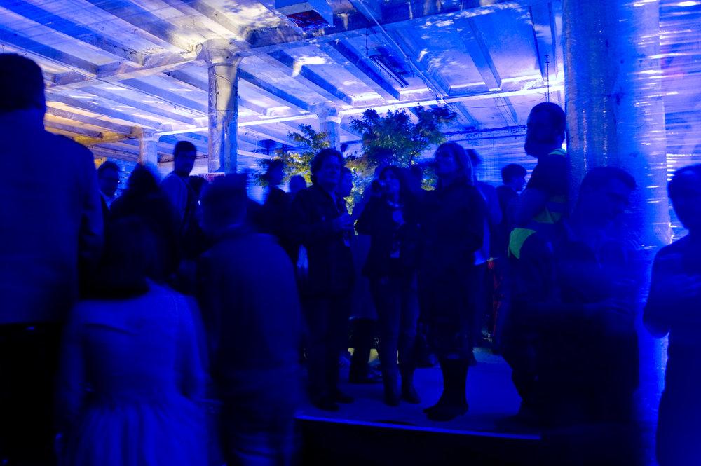 party_DSC7010.jpg