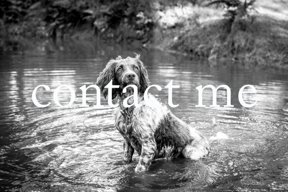 Contact Joe Burford