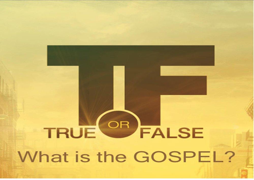 true or false.jpg