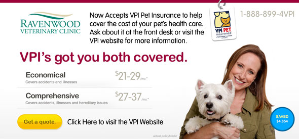 vpi-insurance.jpg