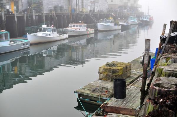 Foggy morning in portland maine shawn hoke for Portland maine fishing