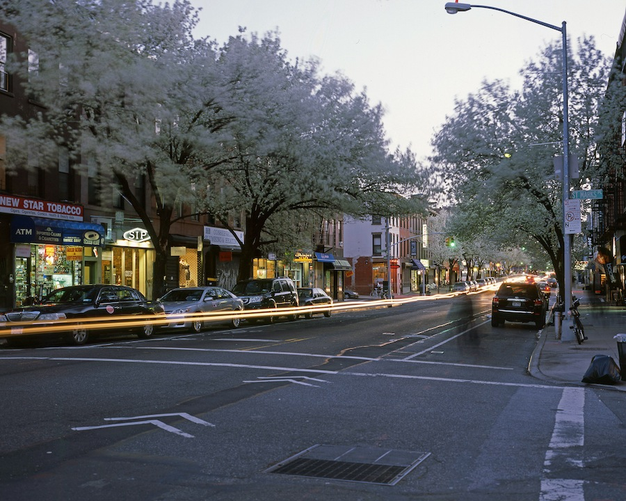 Trees Blooming on Fifth Avenue at Dusk, Park Slope, Brooklyn, 4x5 Fuji Provia Slide Film