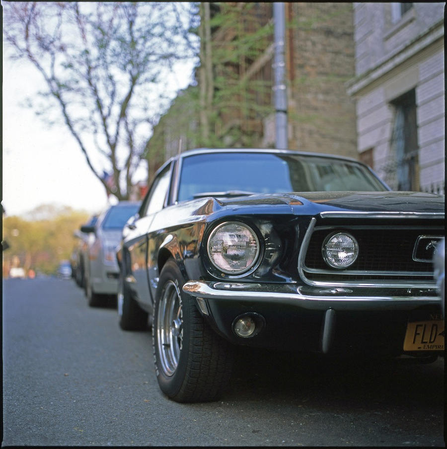 Mustang, Brooklyn, Hasselblad 501cm and Fuji Provia 100